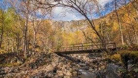 Scenisk flod, bro och vattenfall stock video
