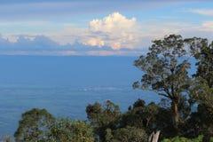 Scenisk himmel med trädet Fotografering för Bildbyråer