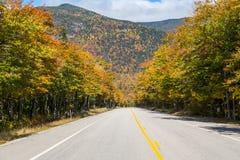 Scenisk huvudväg 302 för vitt berg Royaltyfria Bilder