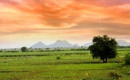 scenisk india liggande Arkivfoto