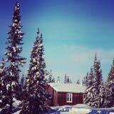 Scenisk instagram av stugan i vinter Royaltyfri Foto