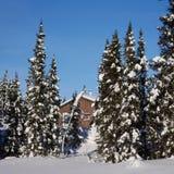 Scenisk instagram av stugan i vinter Arkivfoto