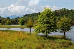 Scenisk Lake med berg Arkivbild