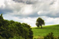 Scenisk landskapsikt längs Tennessee River Fotografering för Bildbyråer