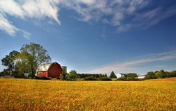 scenisk lantgårdliggande Arkivfoto