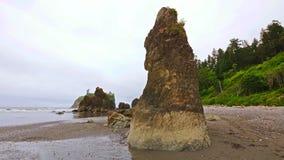 Scenisk natur Washington State - Ruby Beach (den olympiska nationalparken) arkivbilder