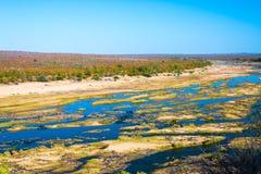 Scenisk och färgrik landskap för Olifants flod, med djurliv i den Kruger nationalparken, berömd loppdestination i Sydafrika Arkivbild