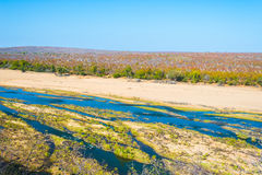 Scenisk och färgrik landskap för Olifants flod, med djurliv i den Kruger nationalparken, berömd loppdestination i Sydafrika Royaltyfria Bilder