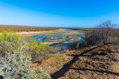 Scenisk och färgrik landskap för Olifants flod, med djurliv i den Kruger nationalparken, berömd loppdestination i Sydafrika Royaltyfri Fotografi