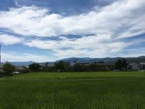 Scenisk panoramabergsikt och risfält i Kyoto i sommartid royaltyfri fotografi