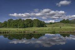 scenisk reflexionsflod Royaltyfri Bild