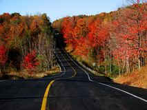 scenisk route Royaltyfri Fotografi