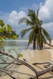 Scenisk San Blas strand Royaltyfri Bild