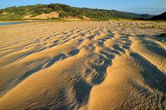 Scenisk sandig strand med vind-blåste modeller i sand royaltyfri fotografi