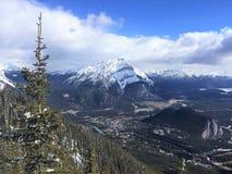 Scenisk sikt av Banff från Sulphurberget med tallen, Banff nationalpark Fotografering för Bildbyråer