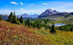 Scenisk sikt av berg i den Banff nationalparken, Kanada Royaltyfria Foton