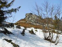 Scenisk sikt av de härliga bergen under den blåa himlen, Carpathians, Ukraina arkivbilder