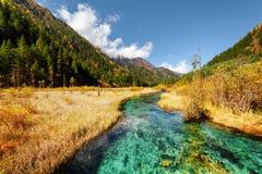 Scenisk sikt av den fantastiska floden bland nedgångfält och berg Royaltyfri Foto
