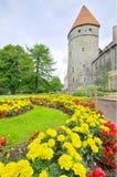 Scenisk sikt av den gamla medeltida staden av Tallinn, Estland i en molnig dag Arkivfoto