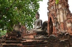 Scenisk sikt av den imponerande prangen av Wat Phra Ram Arkivbild