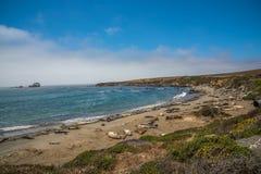 Scenisk sikt av den Stillahavs- huvudvägen 1 för Kalifornien kustlinje Arkivfoton