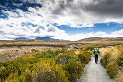 Scenisk sikt av den Tongariro nationalparken i Nya Zeeland arkivbilder