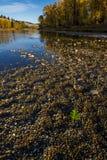 Scenisk sikt av flodstranden i nedgången Arkivbilder