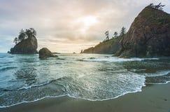 Scenisk sikt av havsbunten i den andra stranden när solnedgång, i olympisk nationalpark för mt, Washington, USA Royaltyfria Foton