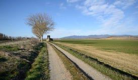 Scenisk sikt av jordbruks- fält n den Tuscan bygden fotografering för bildbyråer