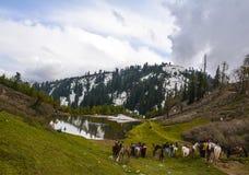Scenisk sikt av Siri Paye i Kaghan Valley, Pakistan Arkivfoton