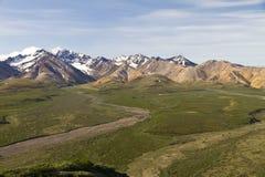 Scenisk sikt för Denali nationalpark Arkivfoto