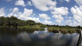 Scenisk sikt för Florida Everglades royaltyfri fotografi