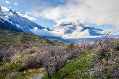 Scenisk sikt på den Torres del Paine treken Royaltyfria Foton