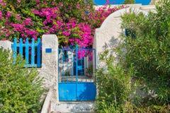 Scenisk sikt på det grekiska vita stenhuset med härliga växter och växa i trädgårds- bougainvillea öoia santorini Royaltyfri Fotografi