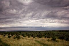 Scenisk sikt på mulna och dynamiska moln över olivträd/panorama- underbar omgivning/härlig naturlig miljö arkivfoto