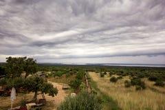 Scenisk sikt på mulna och dynamiska moln över olivträd/panorama- underbar omgivning/härlig naturlig miljö royaltyfri bild