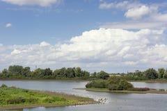 Scenisk sikt på polder med Ouden Waal och Groenlandenen i Ooijpolderen nära Nijmegen i Nethen arkivfoton