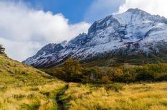 Scenisk sikt på Torresen del Paine Arkivbilder