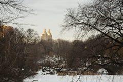 Scenisk sikt till och med vintrig Central Park Royaltyfria Foton
