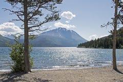 Scenisk sjö i det Yukon territoriet Royaltyfria Foton