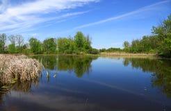 Scenisk sjö i Michigan Arkivbilder