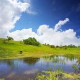 Scenisk sjö med gröna vårkullar längs kust- och blåttclona Royaltyfri Fotografi