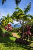 Scenisk slinga på trädgården av Eden Arboretum Arkivfoton