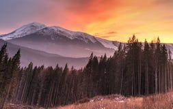 Scenisk solnedgång i ukrainare Carpathians.Hdr. Arkivbilder