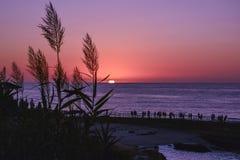 Scenisk solnedgång med främst härligt högväxt gräs och folk i pir fotografering för bildbyråer