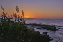 Scenisk solnedgång med främst härligt högväxt gräs och folk i pir royaltyfria bilder