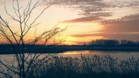 Scenisk solnedgång, video 4K lager videofilmer