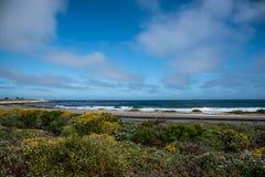 Scenisk stenig kustlinje längs det historiska 17 mil drevet Royaltyfria Bilder