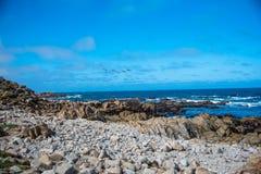 Scenisk stenig kustlinje längs det historiska 17 mil drevet Arkivfoto