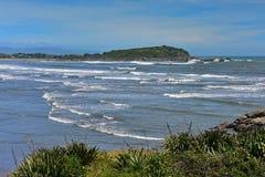 Scenisk Tauranga för skyddsremsakoloni fjärd i Nya Zeeland Fotografering för Bildbyråer